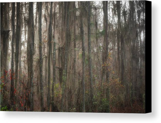 Grand Bay Canvas Print featuring the photograph Warmth by Chad Talton