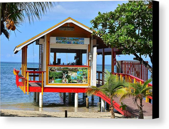 Canvas Print featuring the photograph Roatan Life by Gianni Bussu