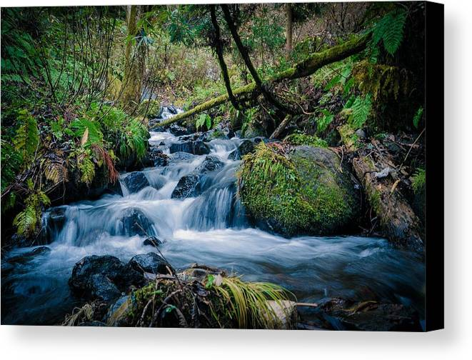 Water Canvas Print featuring the photograph Waterfall by FL collection