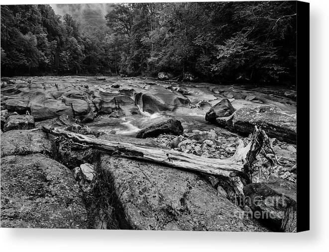 Williams River Canvas Print featuring the photograph Williams River Summer by Thomas R Fletcher
