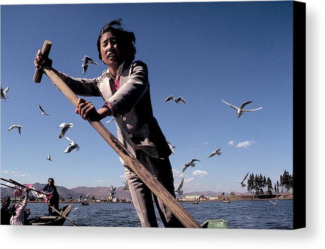 Seagulls Canvas Print featuring the photograph Boat Girl On China Lake by Carl Purcell