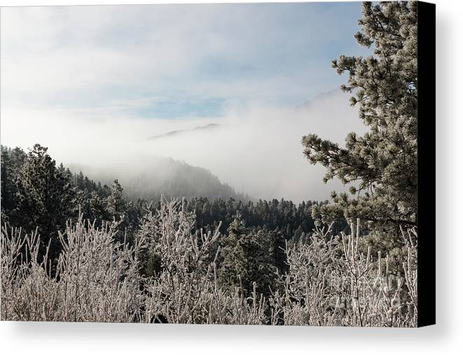Pikes Peak Canvas Print featuring the photograph Frosty Pikes Peak by Steve Krull