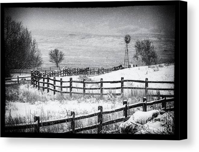 Horse Corral Landscape Canvas Print featuring the photograph The Corral by Jim Garrison