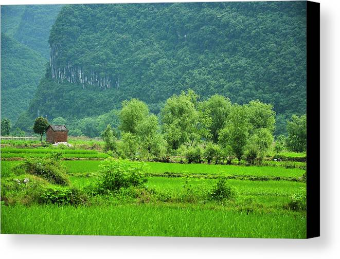 Landscape Canvas Print featuring the photograph The Beautiful Karst Rural Scenery by Carl Ning
