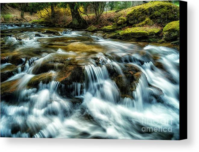 Anthony Creek Canvas Print featuring the photograph Spring Along Anthony Creek by Thomas R Fletcher
