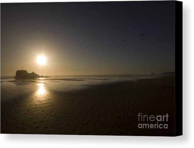 Cornwall Canvas Print featuring the photograph The Flying Ones by Angel Ciesniarska