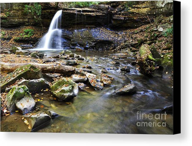 Holly River State Park Canvas Print featuring the photograph Upper Falls Holly River State Park by Thomas R Fletcher