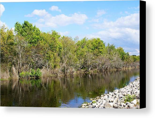 Landscape Canvas Print featuring the photograph A Gentle Stream by Florene Welebny