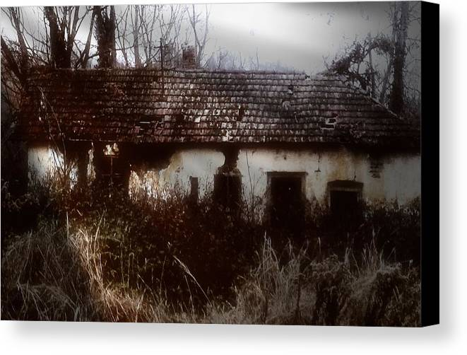 House Canvas Print featuring the photograph A House In The Woods by Mimulux patricia No
