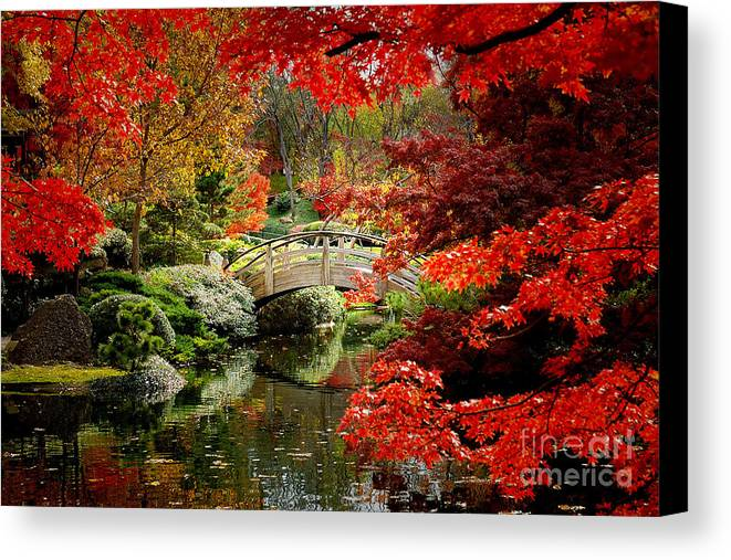 Landscape Canvas Print featuring the photograph A Most Beautiful Spot by Jon Holiday