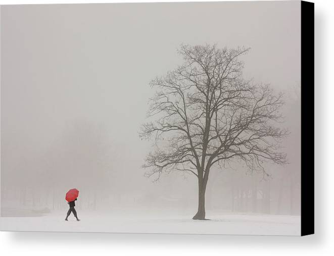 Snowy Winter Canvas Print featuring the photograph A Shortcut Through The Snow by Tom York Images