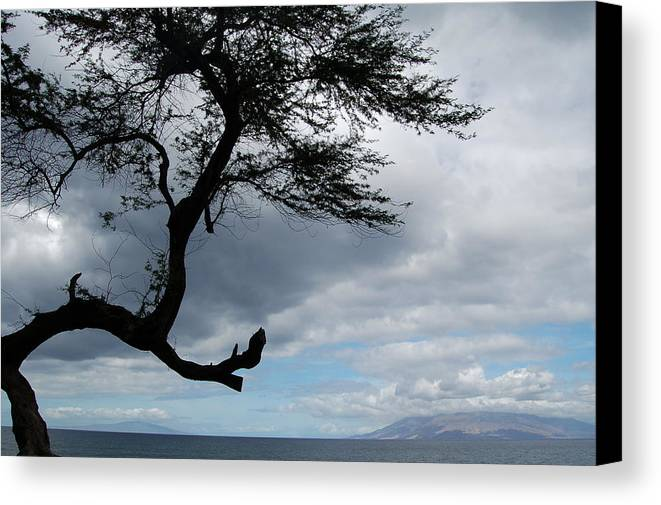 Hawaii Canvas Print featuring the photograph A View From Maui by J D Banks