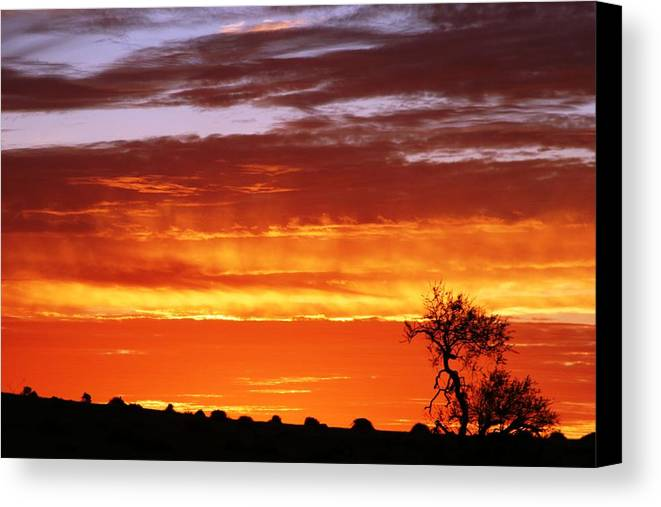 Sunset Canvas Print featuring the photograph African Sunset by Linda Russell