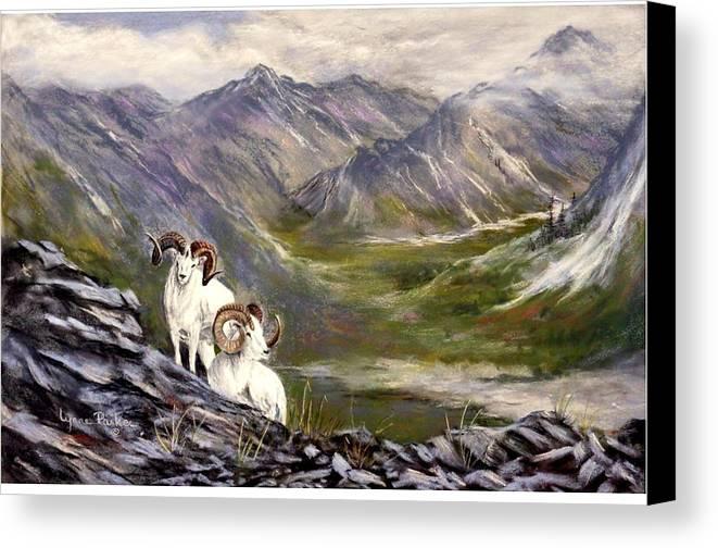 Alaskan Dalls Sheep Canvas Print featuring the pastel Alaskan Dalls Sheep by Lynne Parker