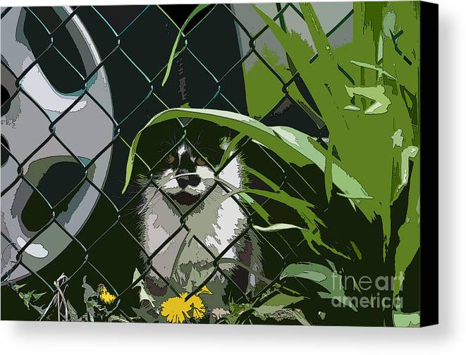 Alley Cats Canvas Print featuring the photograph Alley Cat by Reb Frost