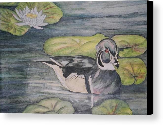 Wood Duck Canvas Print featuring the painting Among The Lillypads by Debra Sandstrom