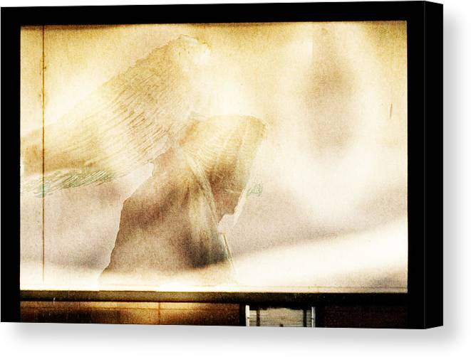 Digital Photography Canvas Print featuring the photograph Angel I by Tony Wood
