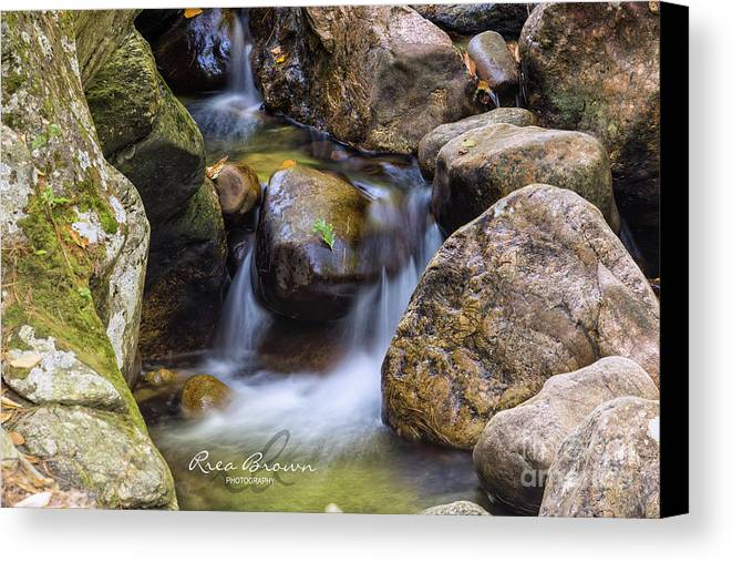 Waterfall Canvas Print featuring the photograph Autumn Falls by Rrea Brown