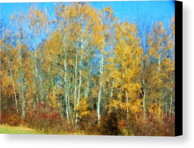 Canvas Print featuring the photograph Autumn Woodlot by David Lane