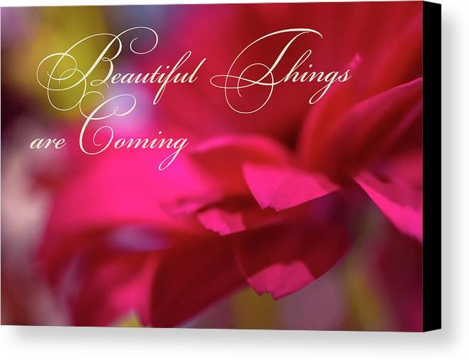 Colorful Canvas Print featuring the photograph Beautiful Things Are Coming by Marnie Patchett
