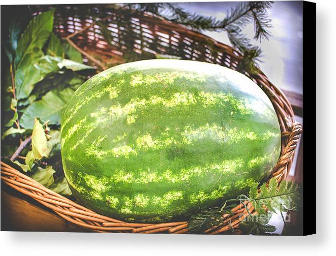 Agriculture Canvas Print featuring the photograph Big Oval Green Watermelon In A Basket by Luca Lorenzelli