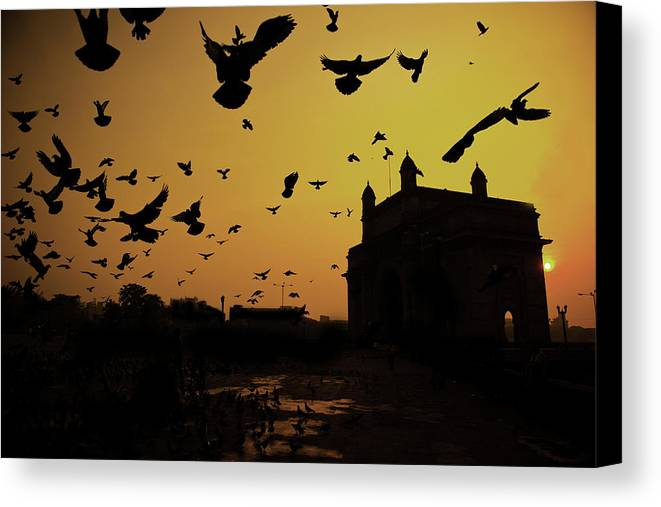 Horizontal Canvas Print featuring the photograph Birds In Flight At Gateway Of India by Photograph by Jayati Saha