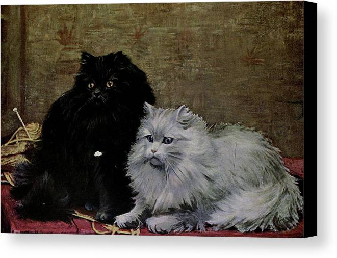 Cats Canvas Print featuring the painting Black And White Persians by W Luker Junior
