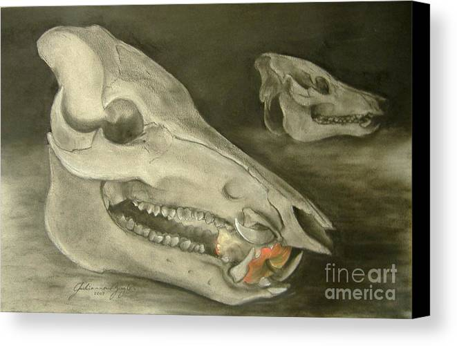 Pig Skull Canvas Print featuring the drawing Bone Appetit by Julianna Ziegler