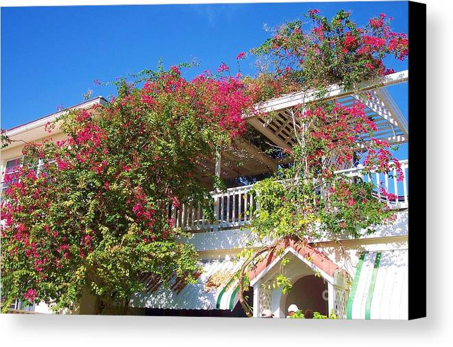 Flowers Canvas Print featuring the photograph Bougainvillea Villa by Debbi Granruth