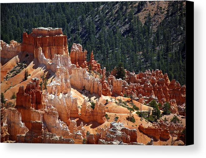 America Canvas Print featuring the photograph Bryce Canyon by Jane Rix