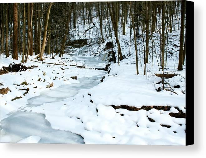 Landscape Canvas Print featuring the photograph Burrrrrr by Amanda Kiplinger