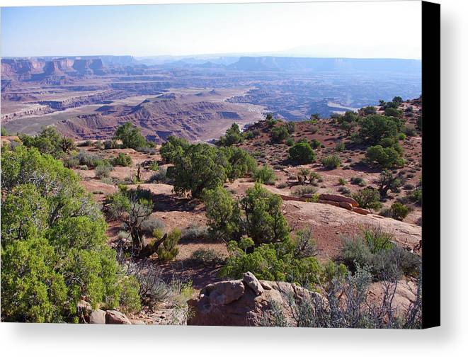 Canyonlands Canvas Print featuring the photograph Canyonlands Park Utah Blue To Green Vista by Ron Swonger