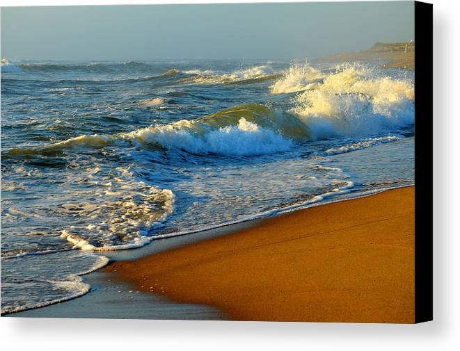 Ocean Canvas Print featuring the photograph Cape Cod By The Sea by Dianne Cowen