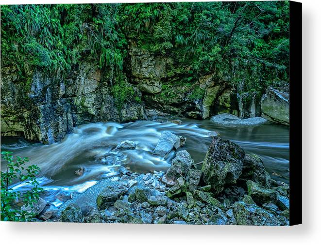 New Zealand Canvas Print featuring the photograph Charming Creek Walkway 1 by Robert Green