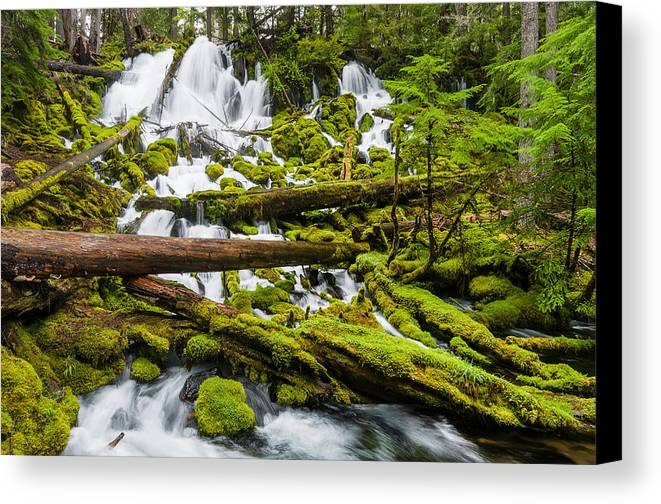 Clearwater Creek Canvas Print featuring the photograph Clearwater Falls And Rapids by Greg Nyquist