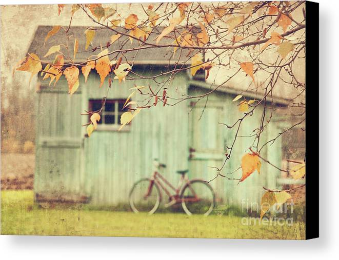 Agriculture Canvas Print featuring the photograph Closeup Of Leaves With Old Barn In Background by Sandra Cunningham