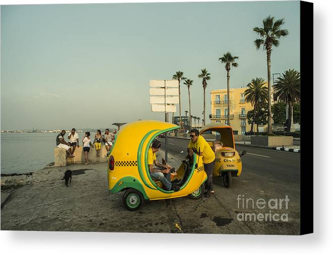 Coco Canvas Print featuring the photograph Coco Taxi's by Rob Hawkins