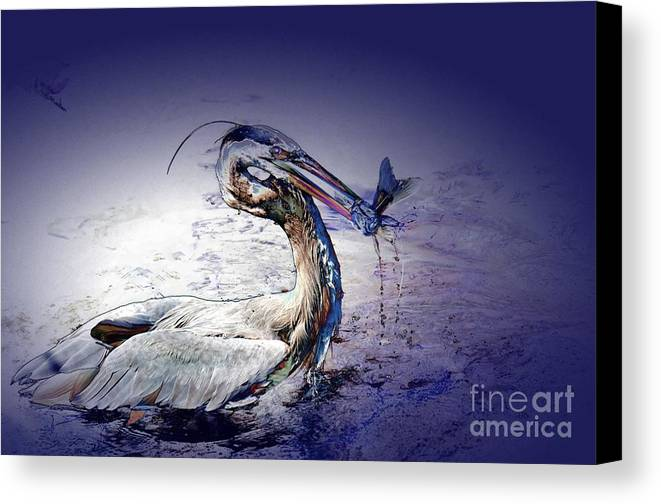 Heron Canvas Print featuring the photograph Colorful Catch by Pamela Blizzard