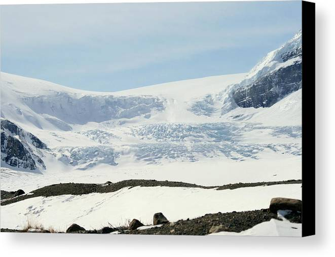 Glacier Canvas Print featuring the photograph Columbia Icefields by Tiffany Vest