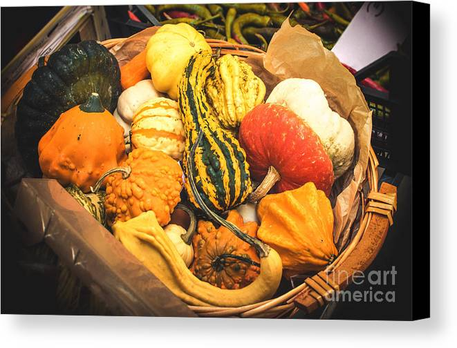 Agriculture Canvas Print featuring the photograph Composition Of Various Gourds In A Basket With Vignetting by Luca Lorenzelli