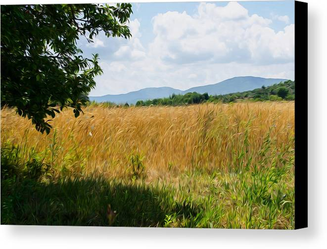 Italy Canvas Print featuring the digital art Countryside Of Italy 2 by Andrea Mazzocchetti