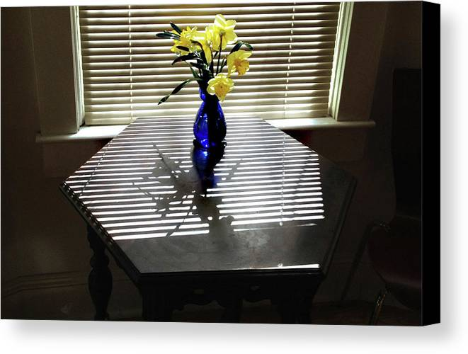 Spring Canvas Print featuring the photograph Daffodils by Michael Selker