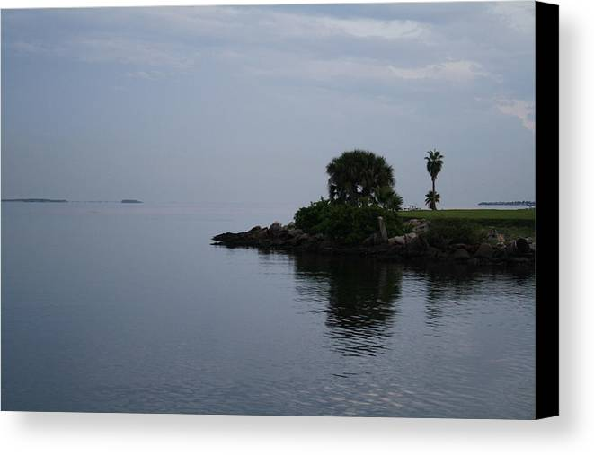Nature Canvas Print featuring the photograph Davis Point by Larry Underwood