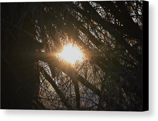 Sun Canvas Print featuring the photograph Day Break by Talia Misner