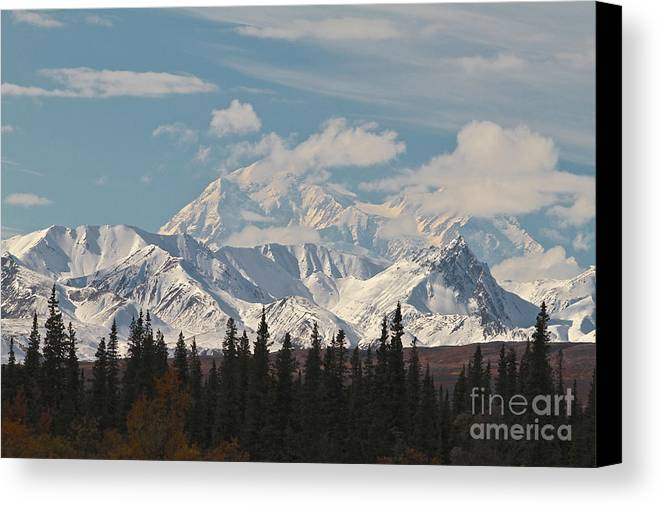 Denali Canvas Print featuring the photograph Denali In Broad Pass by Donna Quante
