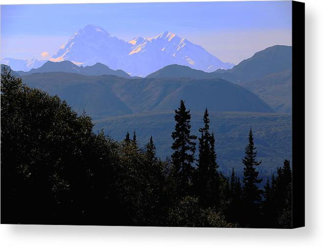 Mountain Canvas Print featuring the photograph Denali Mountain by Merle Smith