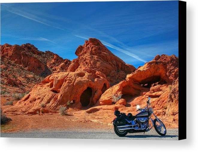 Desert Canvas Print featuring the photograph Desert Rider by Charles Warren