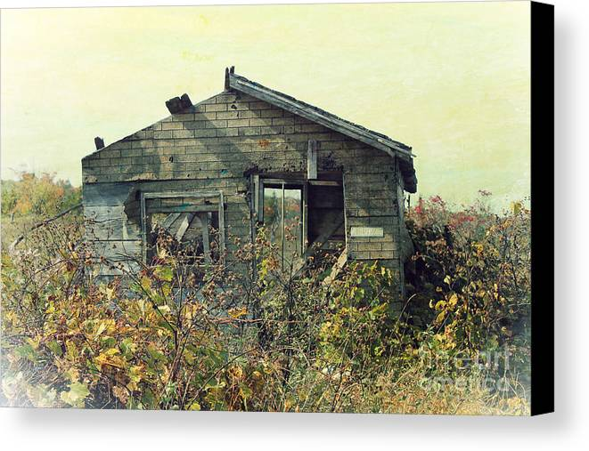 Old Building Canvas Print featuring the photograph Distressed Honey House Door County Wisconsin by Nikki Vig