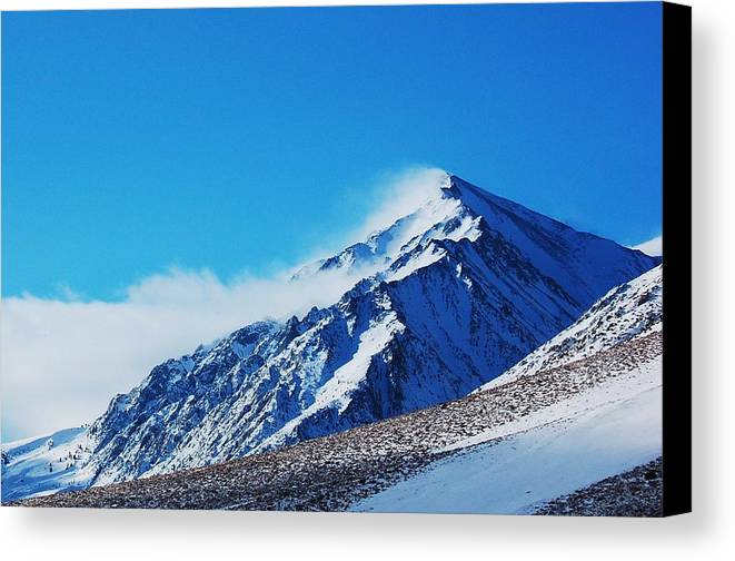 Snow Canvas Print featuring the photograph Drift by Jessica Roth