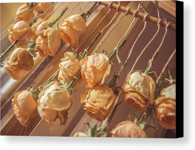 Drying Roses Canvas Print featuring the photograph Drying Roses by Thubakabra